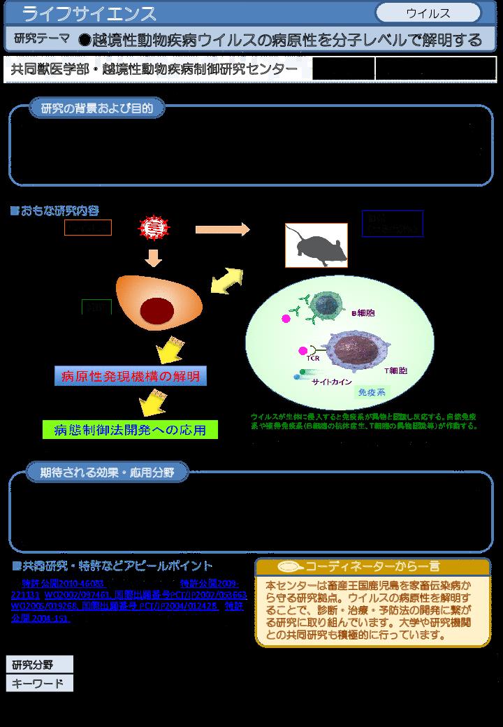 越境性動物疾病ウイルスの病原性を分子レベルで解明する