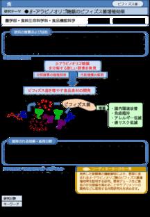 β-アラビノオリゴ糖鎖のビフィズス菌増殖効果