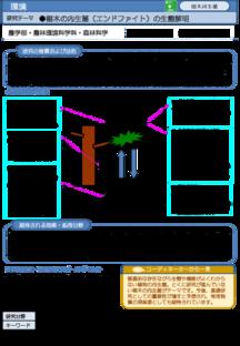 樹木の内生菌(エンドファイト)の生態解明