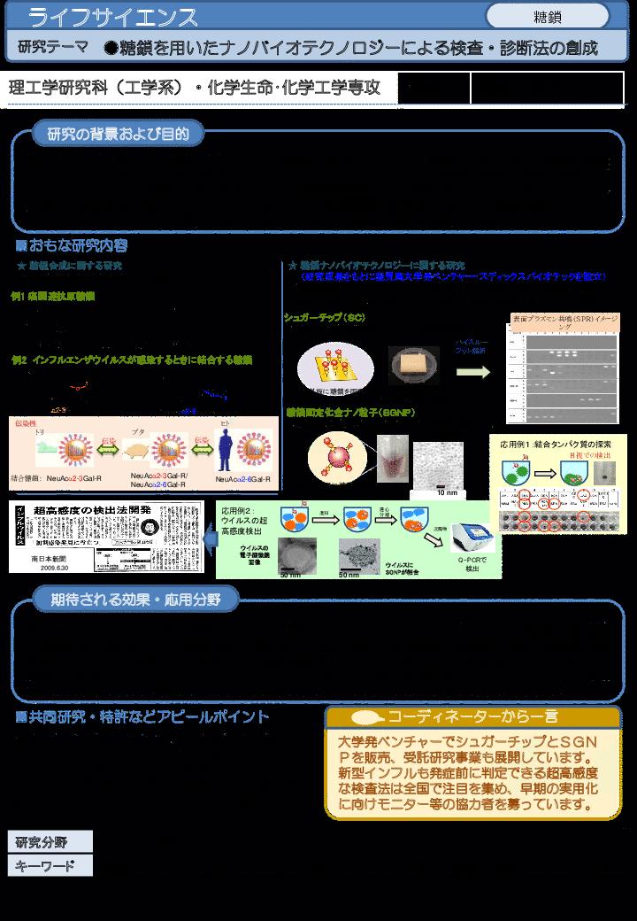 糖鎖を用いたナノバイオテクノロジーによる検査・診断法の創成