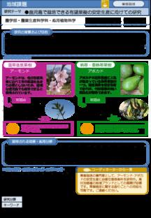 鹿児島で栽培できる有望果樹の安定生産に向けての研究