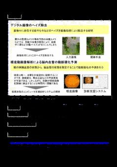画像処理および画像認識に関する研究