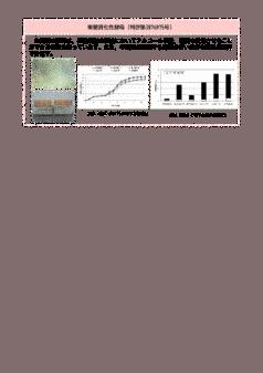 果糖資化性酵母