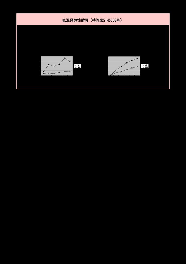 低温発酵性酵母